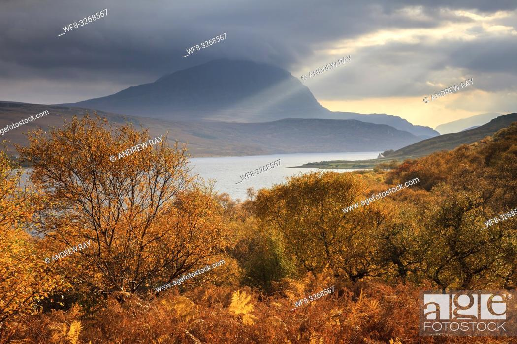 Stock Photo: Ben Hope captured from woodland on the western side of Loch Hope, in the North West Highlands of Scotland.