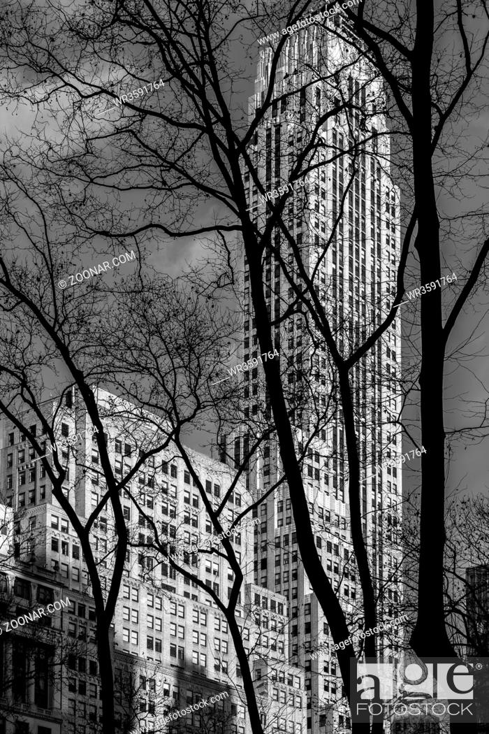 Stock Photo: New York City - USA - DEC 26 2018: Silhouette view of trees to facade fragment of 500 Fifth Avenue art deco building in Bryant Park Manhattan.