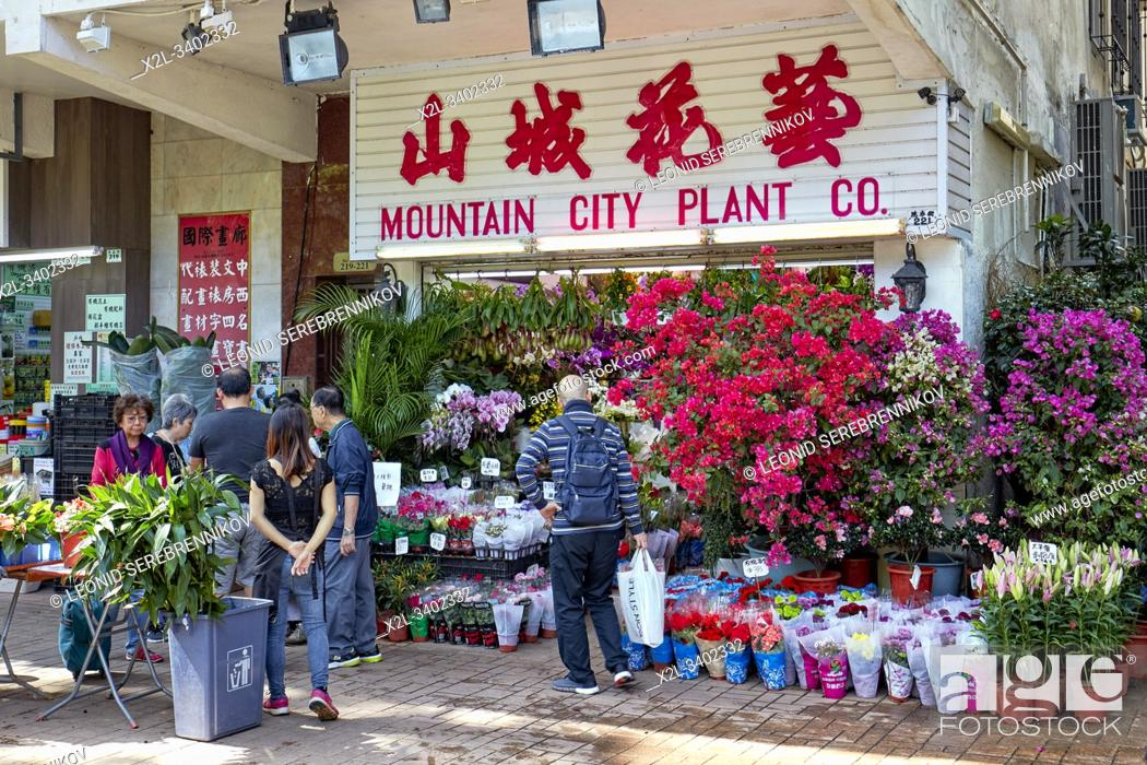Stock Photo: People shopping for houseplants at Flower Market Road. Kowloon, Hong Kong, China.