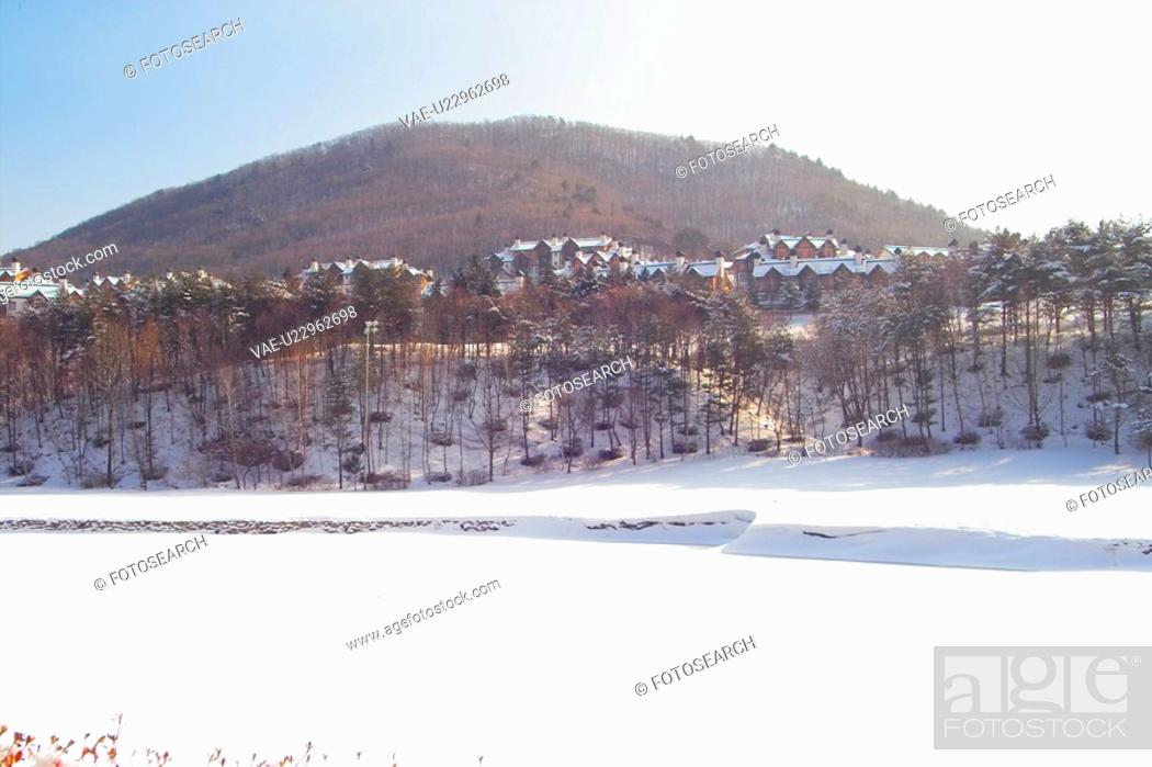 Stock Photo: landscape, winter, background, snowfield, snowy, tree, snow.