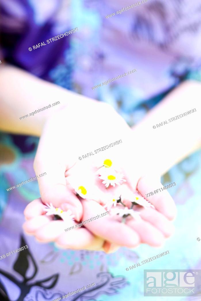Stock Photo: Girl picking up flowers.