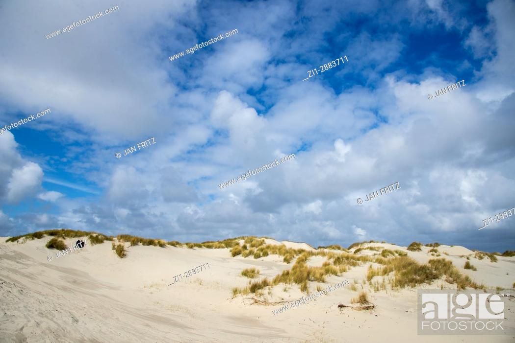 Imagen: dunes and blue sky with white clouds at terschelling, holland.