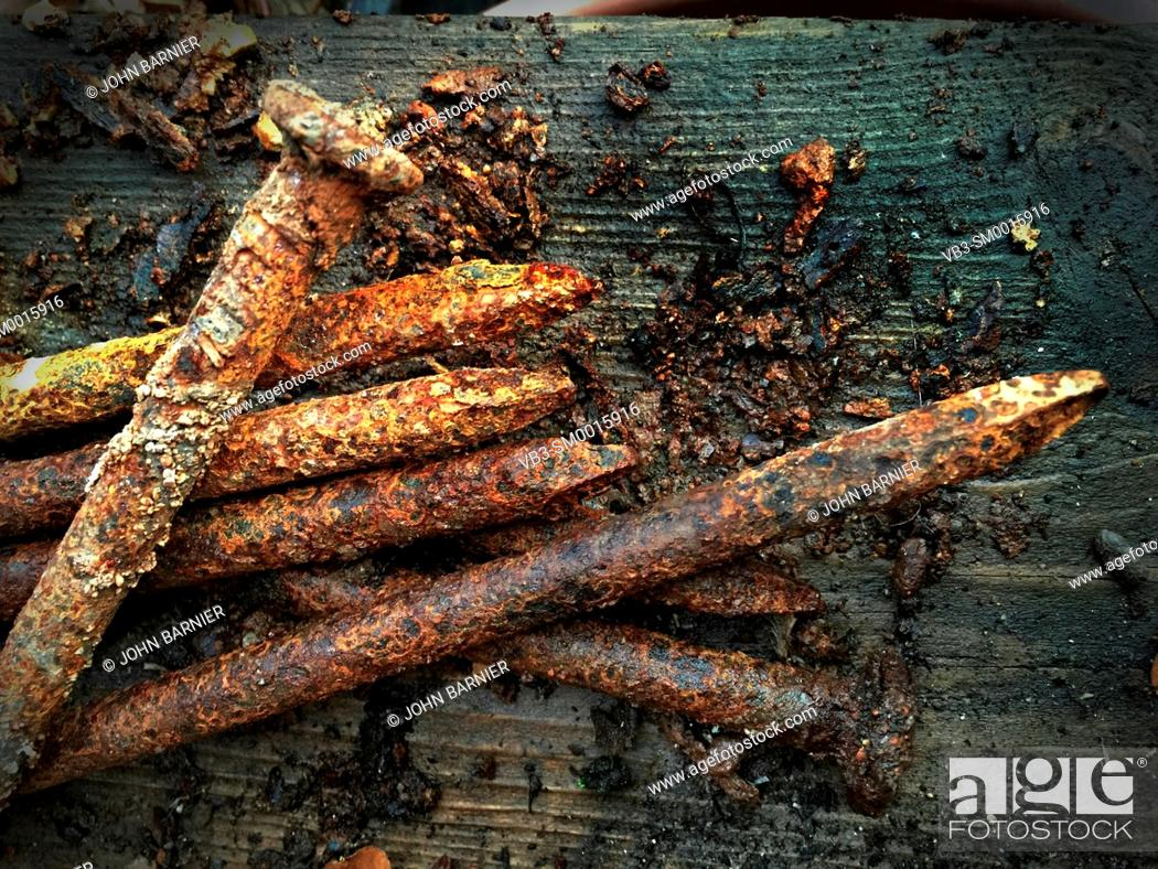 Stock Photo: Rusty, friable small spikes with pieces of rusted steel flaking off onto a weathered wood surface.