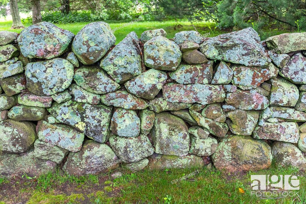 Stock Photo: Green Mossy Old Stone Wall New England Padnaram Dartmouth Massachusetts. Stone walls were built in the early 1600s and 1700s in New England torop mark property.