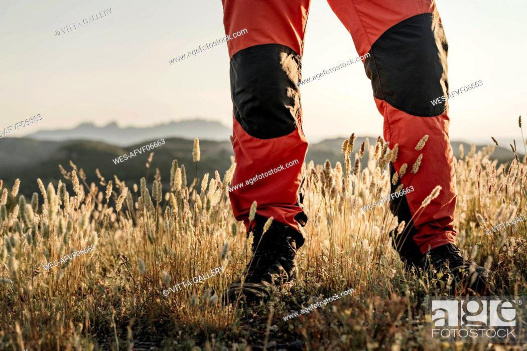 Photo de stock: Senior hiker standing on plants.
