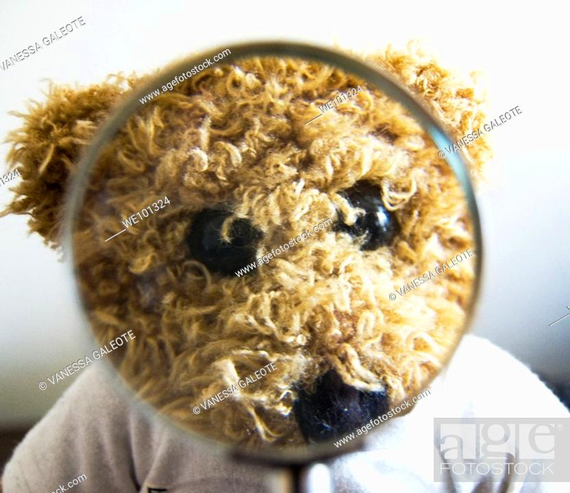 Stock Photo: Teddy bear for different concepts: education, vision, optics, lie, truth.