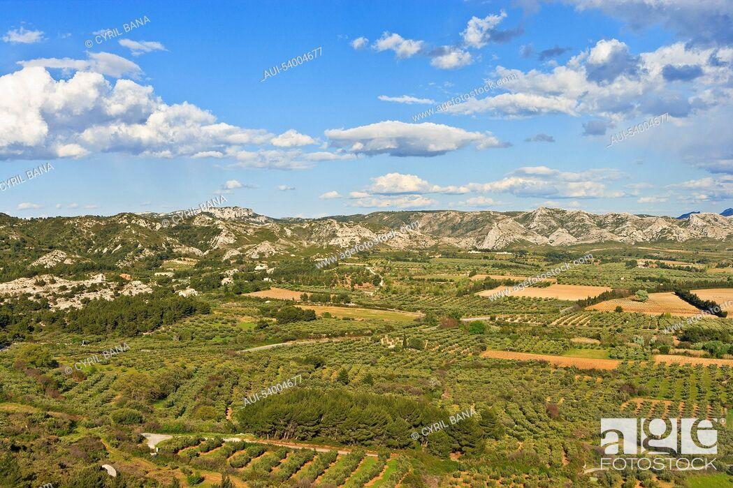 Stock Photo: France, Provence, Les Alpilles, landscape.