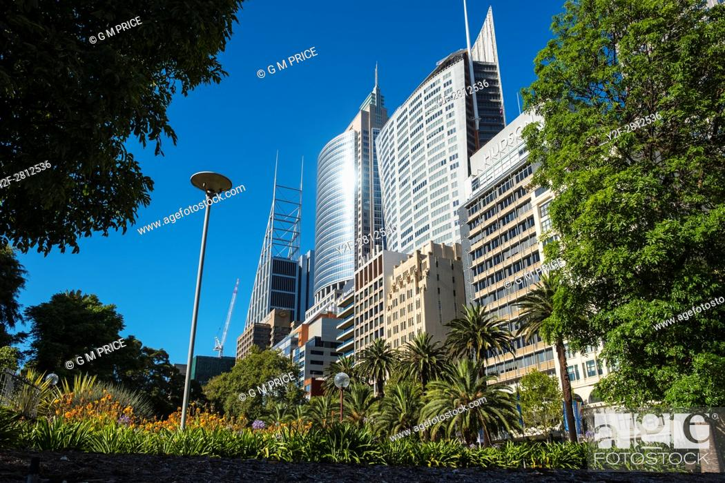 Stock Photo: gardens and high rise buildings along Macquarie Street, Sydney.