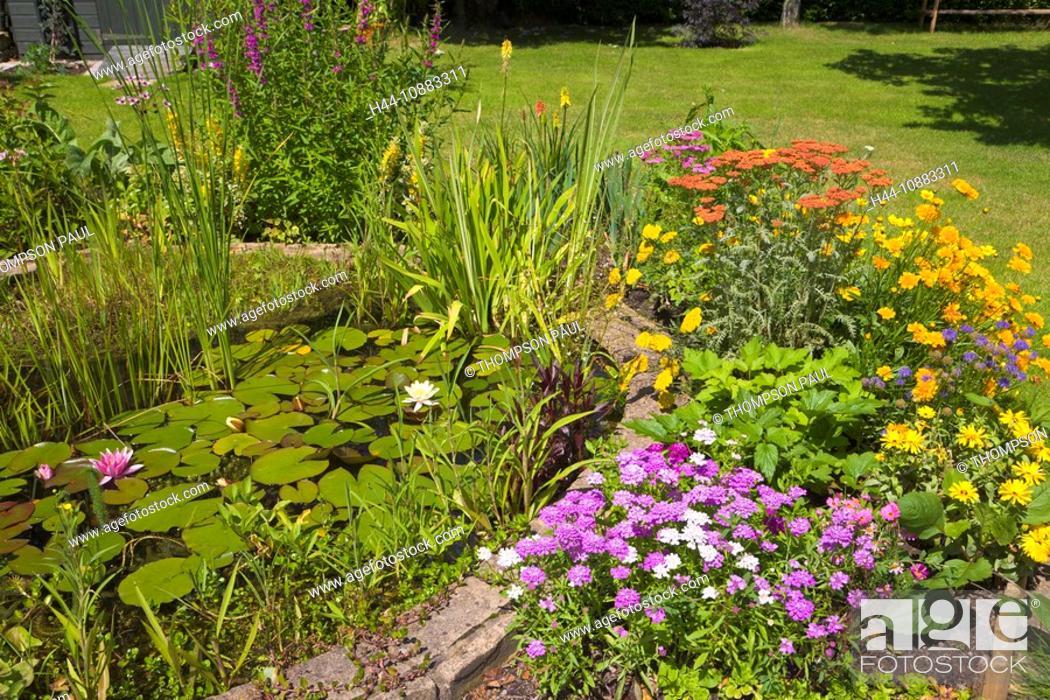 Perennial Flower Border Around A Garden Pond Wirral England Pr