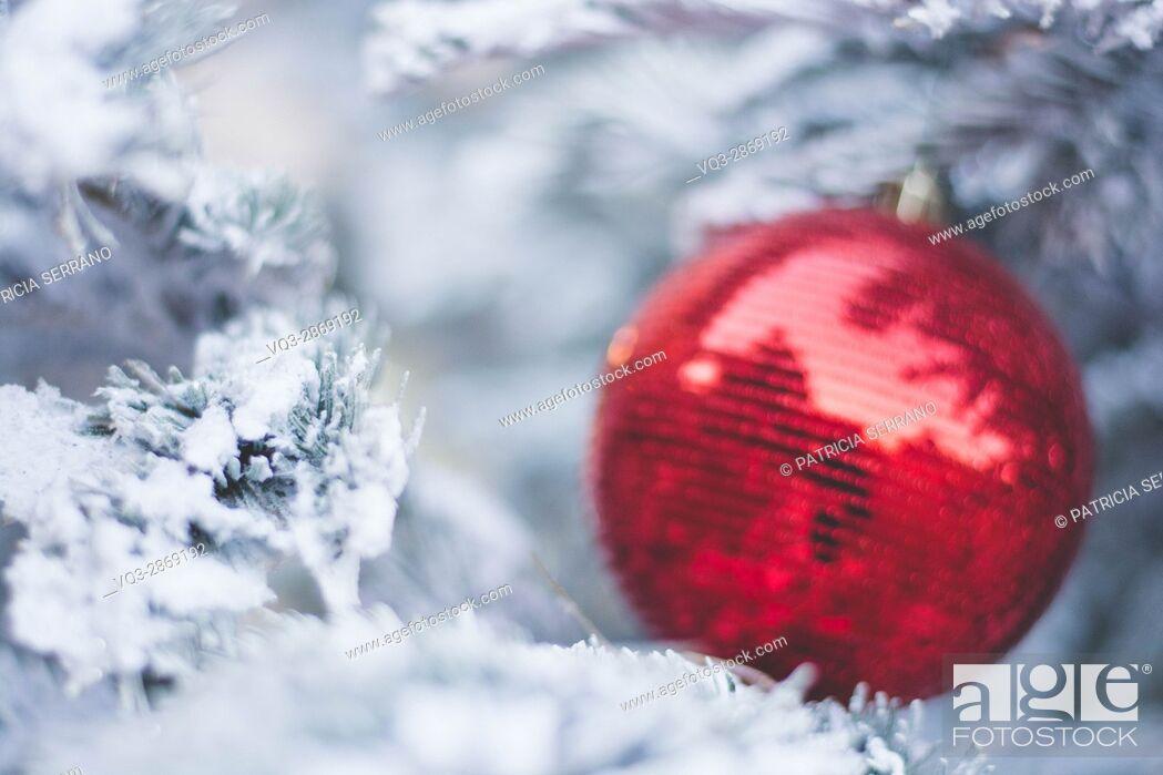Imagen: Christmas ball on a snowy tree, colmar france.