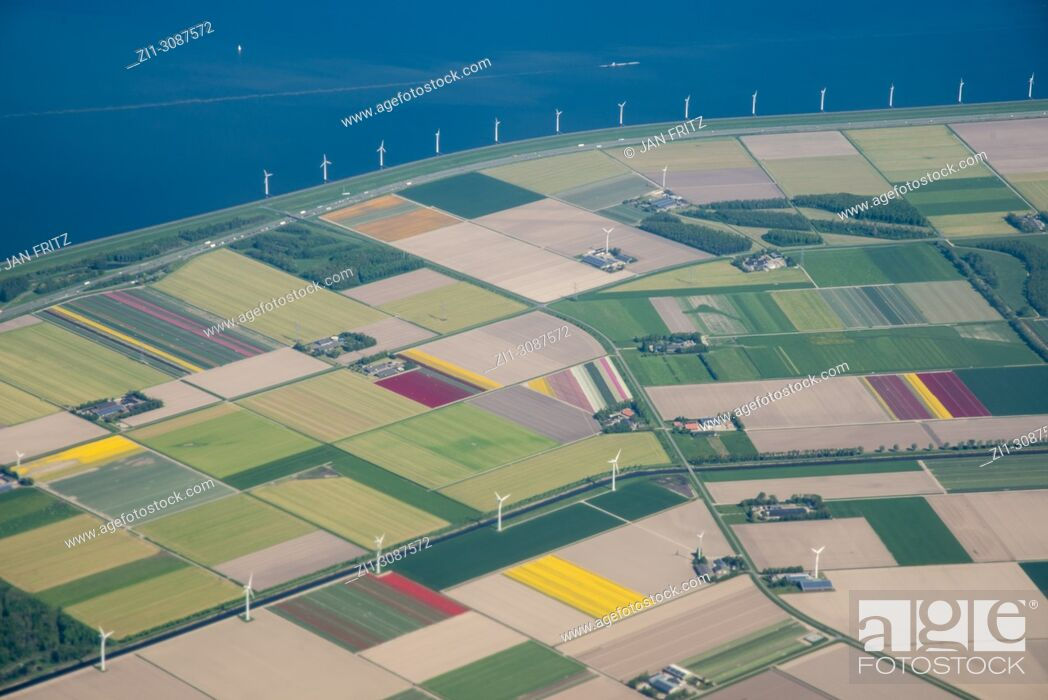 Stock Photo: aerial of Flevolpolder with flowerfields and farmfields in Holland.