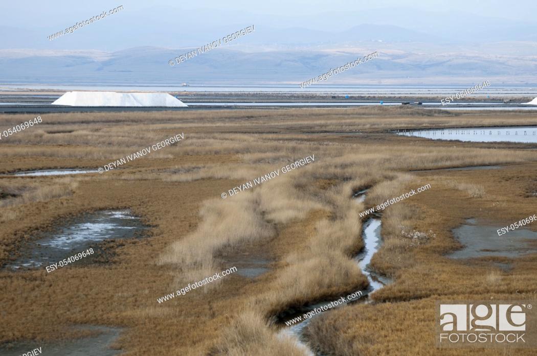 Imagen: Sea â. ‹â. ‹saltern. Ponds for salt production.