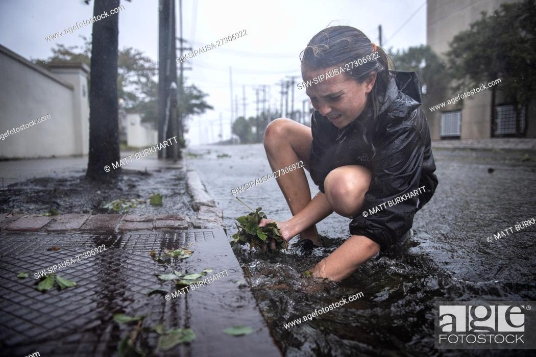 Stock Photo: September 5, 2019; Charleston, SC, USA; Martha Rivers, 13, pulls leaves out of storm drains to help facilitate rainwater drainage during Hurricane Dorian on.