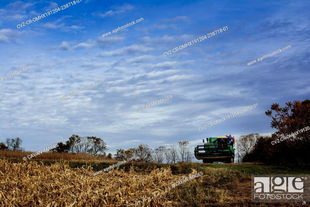 Stock Photo: Farmers on Combine Discussing Harvest of Soybeans.