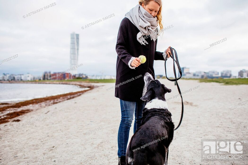 Stock Photo: Woman holding ball while standing with dog on beach.