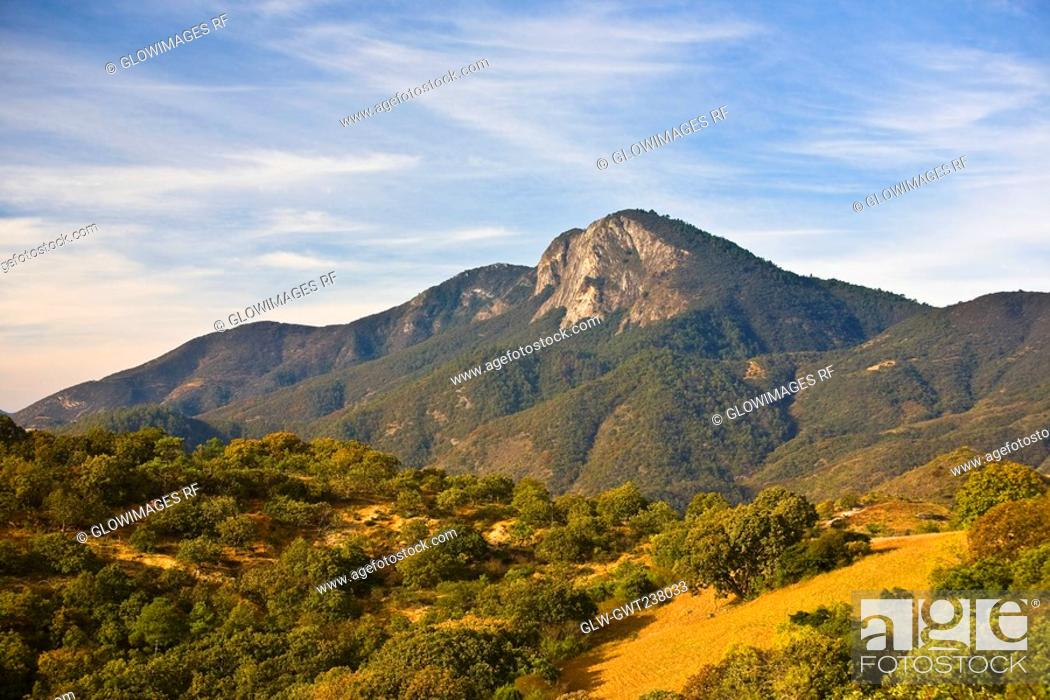 Stock Photo: Trees on a rolling landscape with a mountain in the background, Hierve El Agua, Oaxaca, Oaxaca State, Mexico.