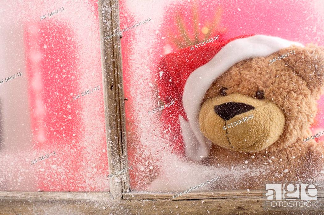 Stock Photo: Teddy bear wearing Santa Claus hat looking out of a window.