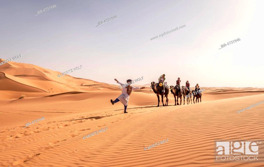 Stock Photo: Tourists with Bedouin guide, caravan with two Dromedary (Camelus dromedarius), sand dunes in the desert, Erg Chebbi, Merzouga, Sahara, Morocco.