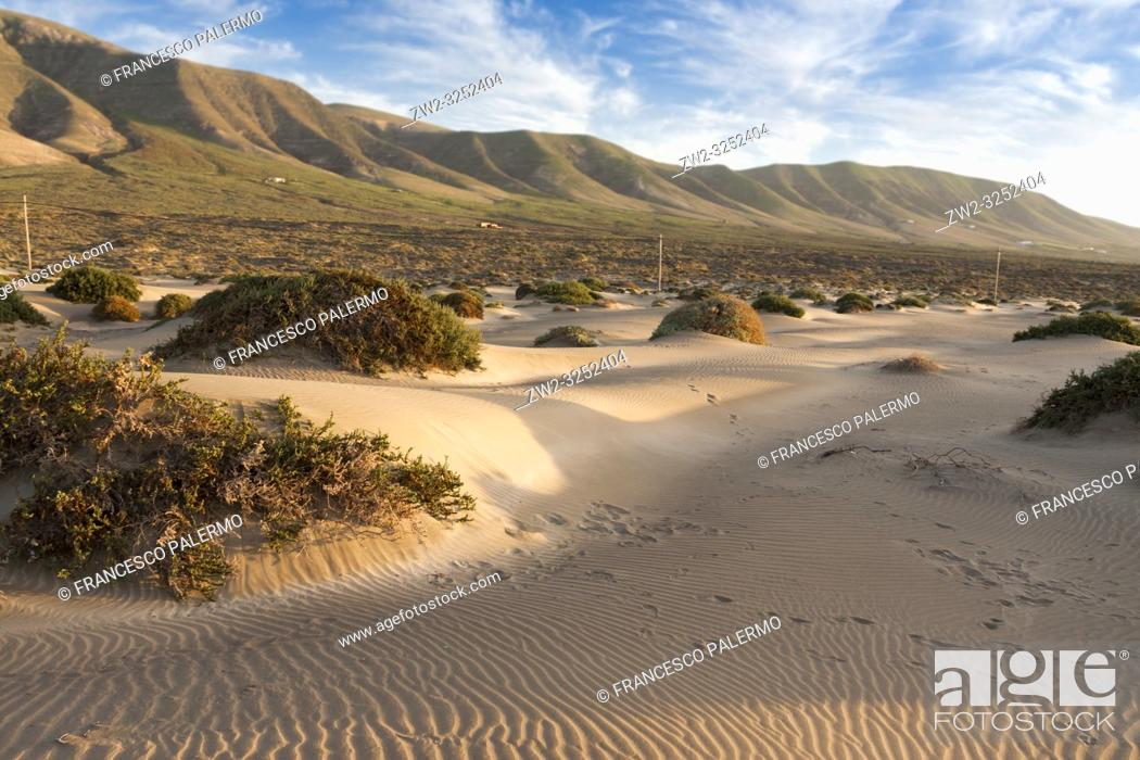 Stock Photo: Features sand dunes of the bay. Famara, Lanzarote. Spain.