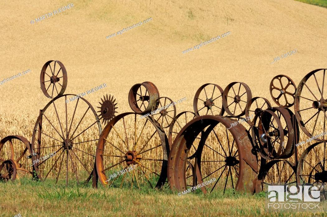 Stock Photo: Wagon wheel fence with wheat field in background. Palouse, Whitman County, Washington State, USA.