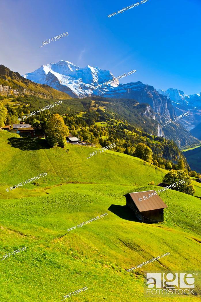 Stock Photo: Wengen, Swiss Alps, Canton Bern, Switzerland.