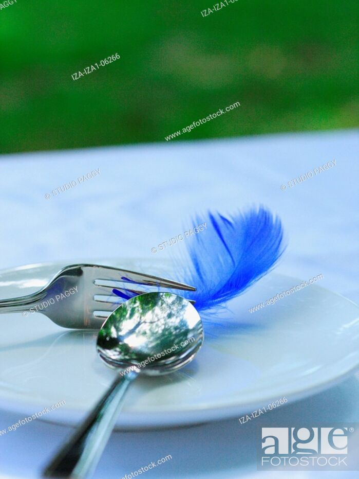 Imagen: Close-up of a spoon and a fork with a feather in a plate.
