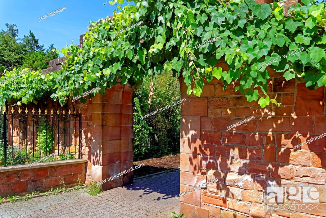 Imagen: More poorly, passageway, fence, Annweiler in the Trifels Germany.