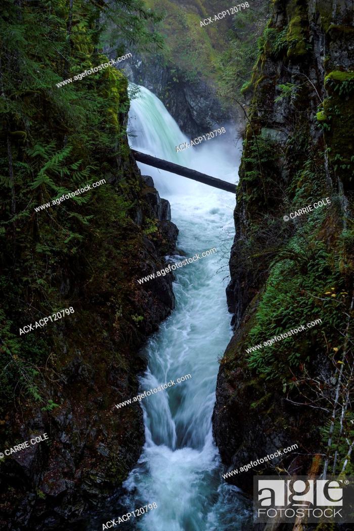 Stock Photo: Little Qualicum Provincial Park, Parksville, Qualicum, British Columbia, Vancouver Island, Canada, Waterfall.