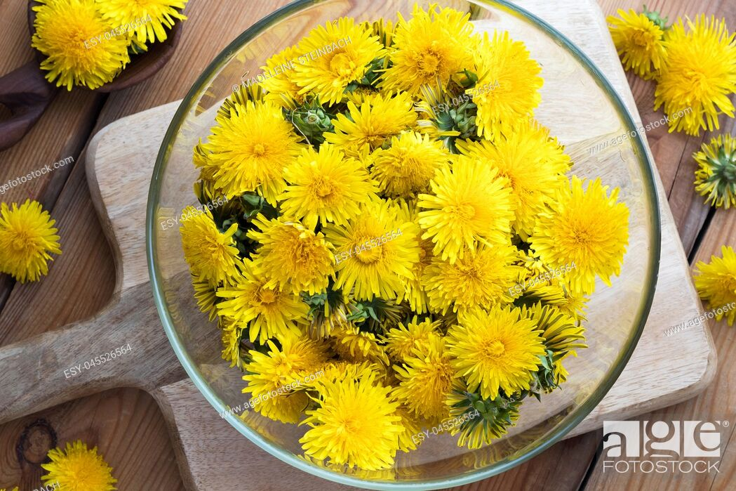 Stock Photo: Yellow dandelion flowers in a bowl, top view.