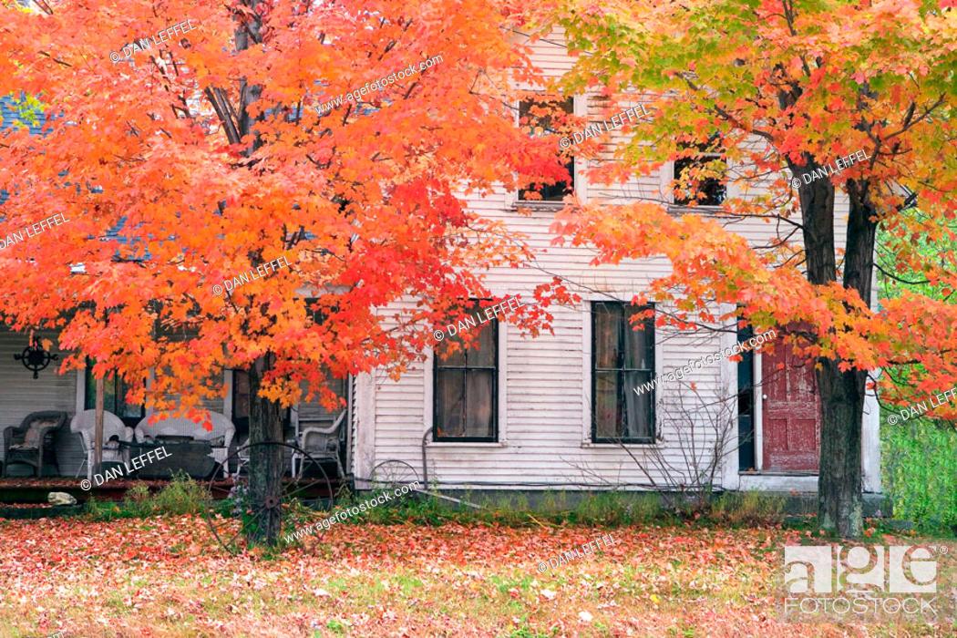 Stock Photo: Maine, USA.