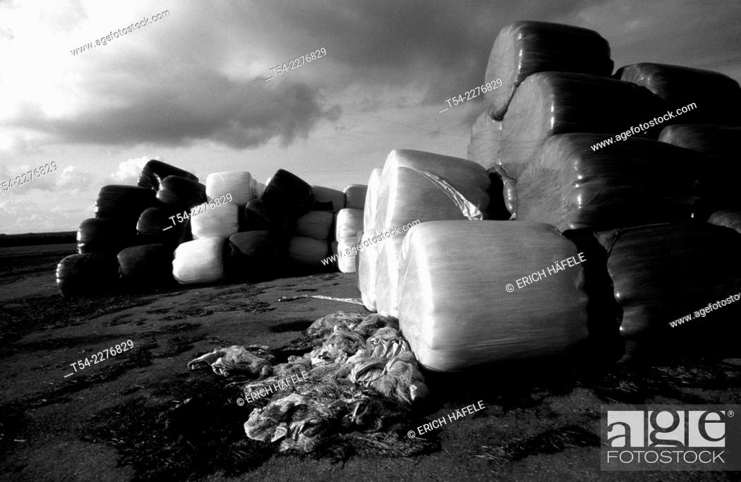 Stock Photo: In plastic boxed cattle feed in a field in Germany.