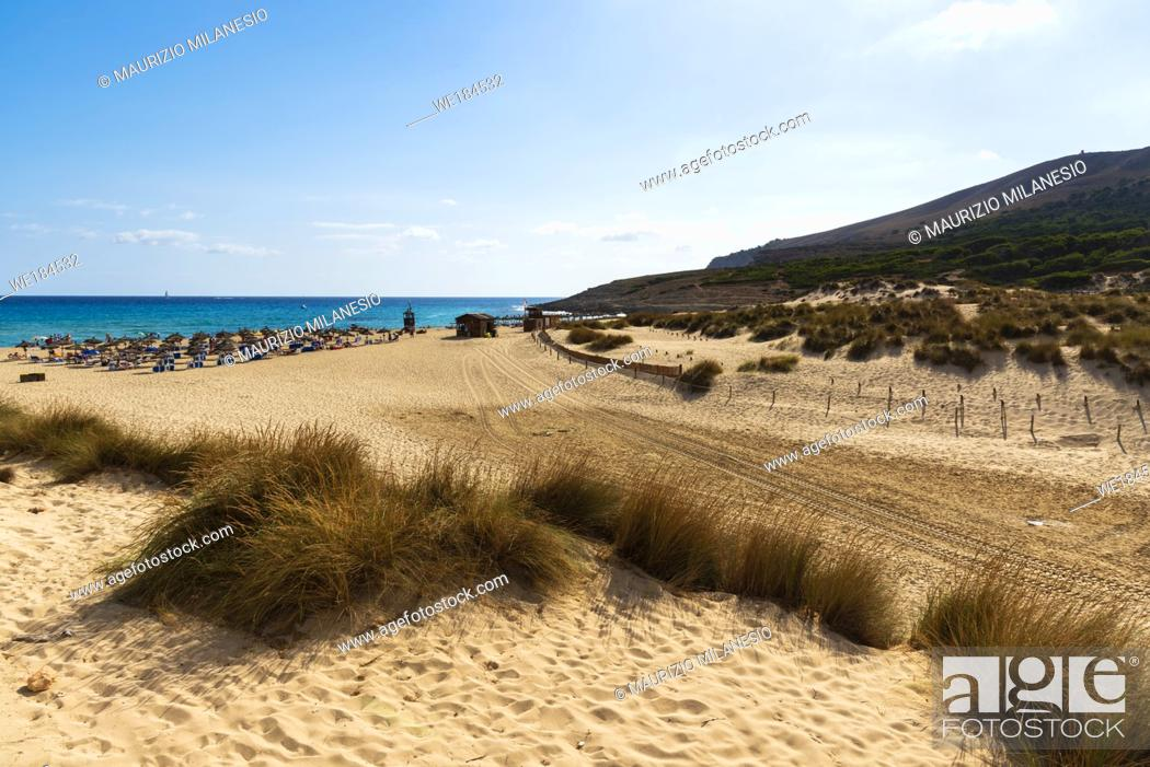 Stock Photo: Access road to the regeneration reserve of sand dunes on the beach of Cala Mesquida Majorca Spain, on the bottom the umbrellas.