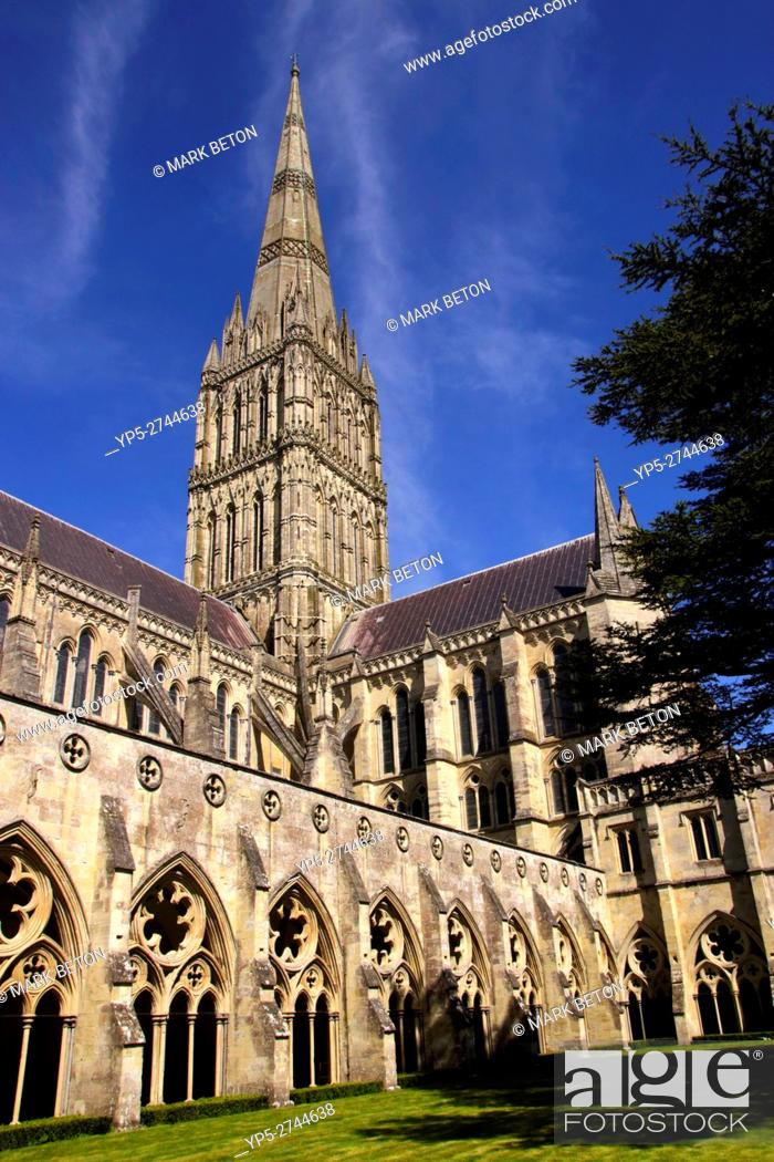 Stock Photo: Salisbury Cathedral Wiltshire England.
