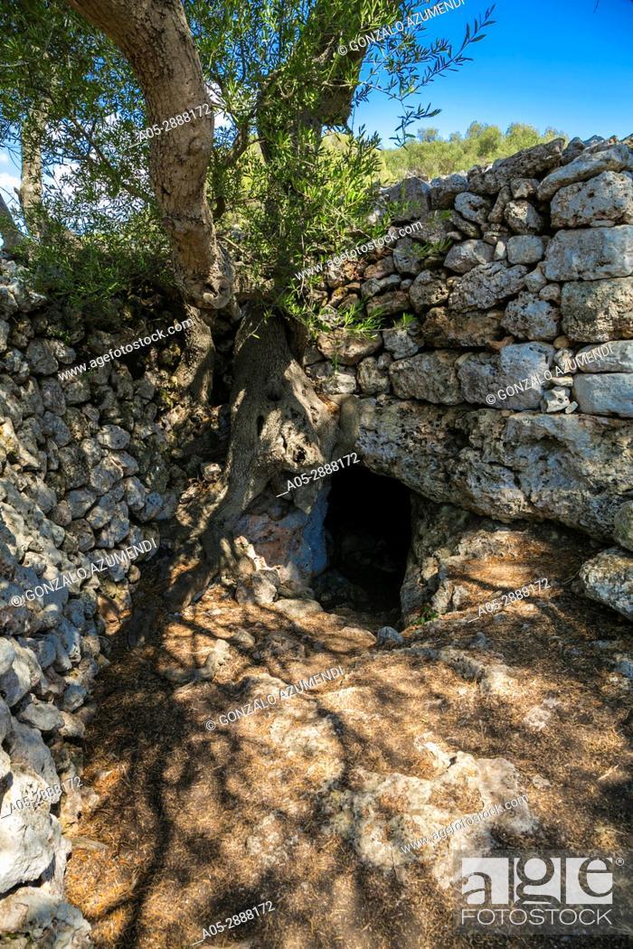 Imagen: Talayotic Village of Son Catlar(1000-700 b C). Ciutadella de Menorca Municipality. Minorca Island. Balearic Islands. Spain.