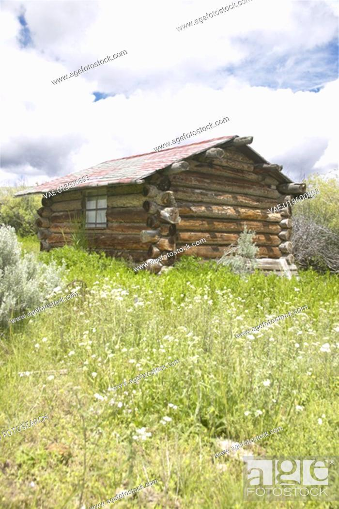 Stock Photo: Deserted old homestead in summer.