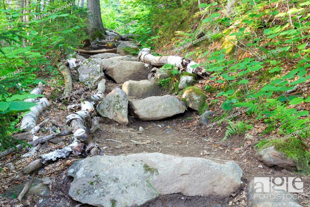 Stock Photo: Stone staircase along Valley Way in the New Hampshire White Mountains during the summer months.