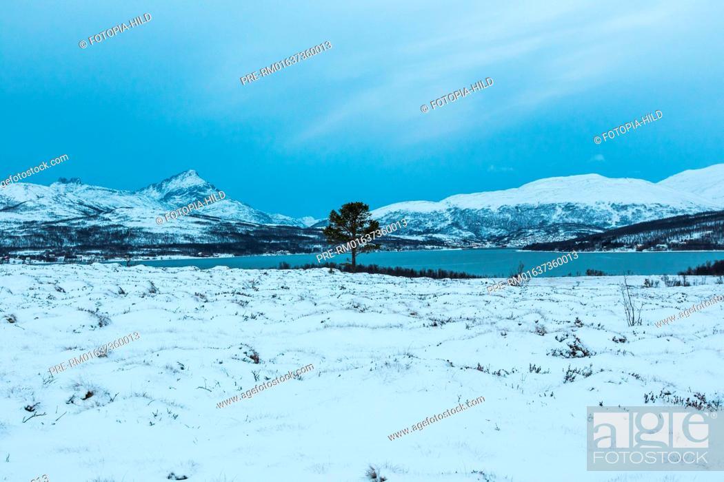 Imagen: Looking to Sørbotn, Troms Fylke, Norway / Blick auf den Sørbotn, Troms Fylke, Norwegen.