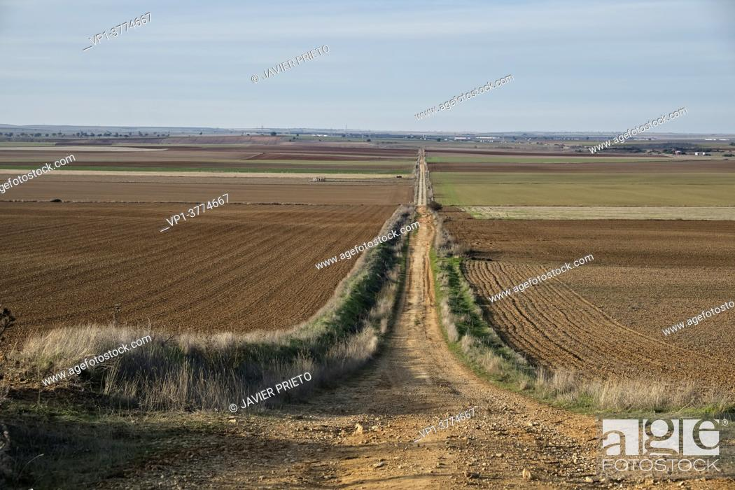 Stock Photo: Extensive view of the road to Santiago del Sureste moving away towards the horizon, as it passes through the province of Valladolid. Castile and Leon.