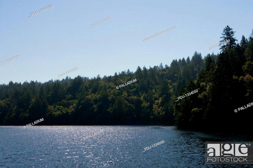 Stock Photo: Panoramic view of a lake, Mt. Tamalpais State Park, California, USA.