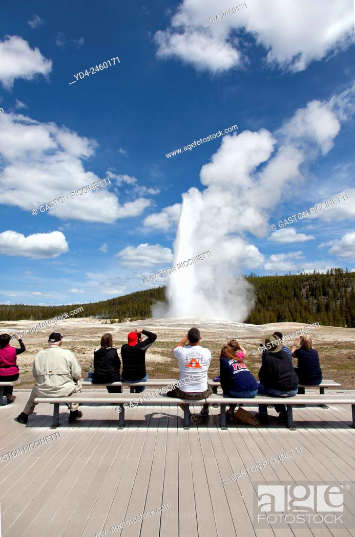 People watching the Old Faithful Geyser eruption in
