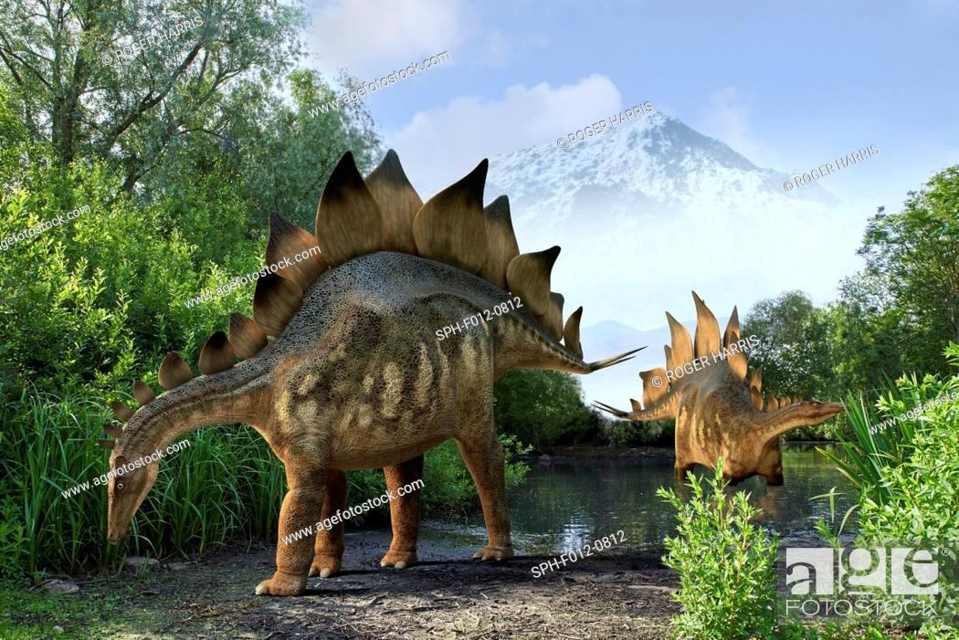 Stock Photo: Stegosaur dinosaurs, illustration.