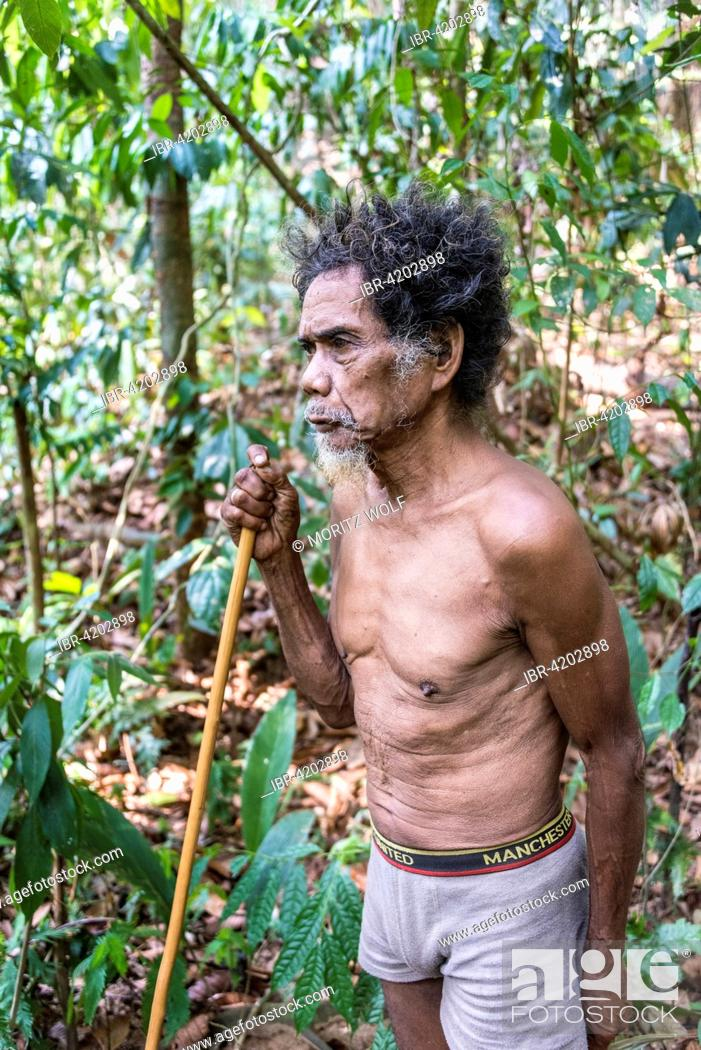 Old Man of the Orang Asil tribe with a blowgun in the jungle