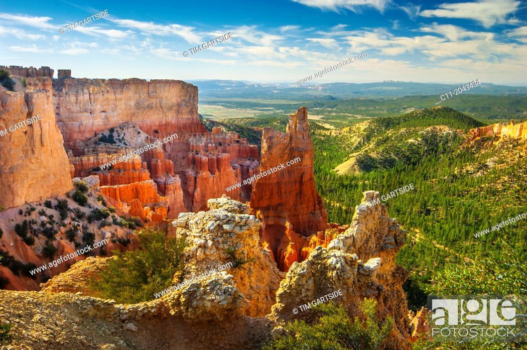 Imagen: hoodoos , Bryce Canyon , National Park , Utah , USA.