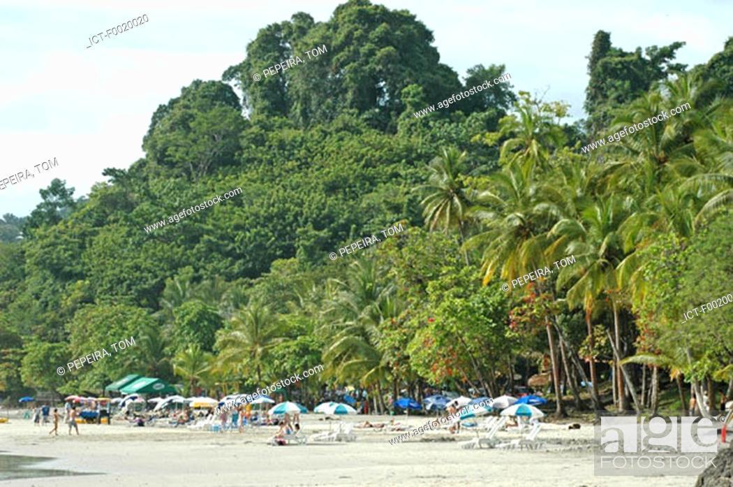 Stock Photo: Costa Rica, Manuel Antonio National Park.