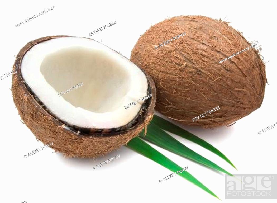 Stock Photo: Coconut.