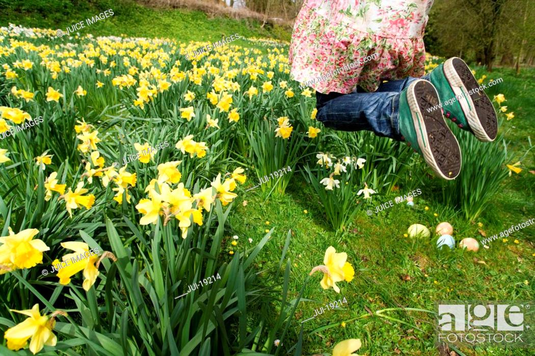 Stock Photo: Excited young girl finding Easter eggs in field of daffodils.