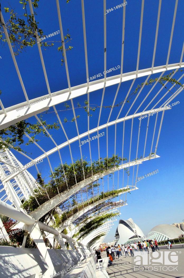Stock Photo: City of Arts and Sciences by Santiago Calatrava, Valencia, Comunidad Valenciana, Spain.
