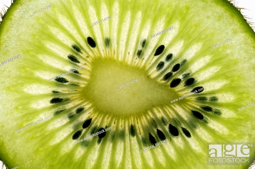 Stock Photo: a single thin slice of kiwi fruit in close up showing the seeds  Lit from behind to emphasize the shape of the cells.