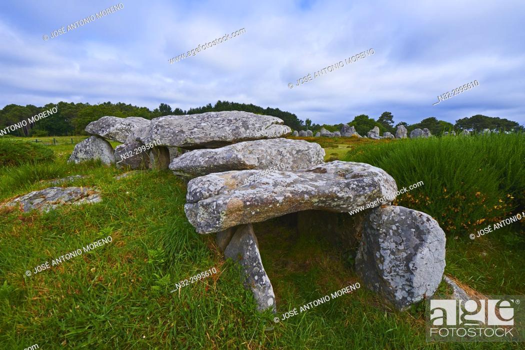 Stock Photo: Carnac, Kermario alignment, Dolmen, Megalithic stones, Megalitic alignments, Morbihan, Bretagne, Brittany, France, Europe.