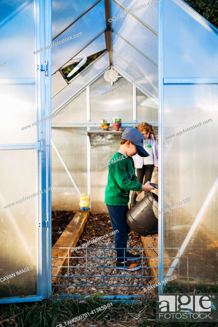 Stock Photo: Young boy and girl using watering can in backyard during spring time.